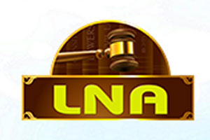 Vu Ngoc Anh Law