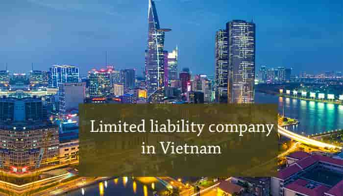 Limited Liability Company In Vietnam